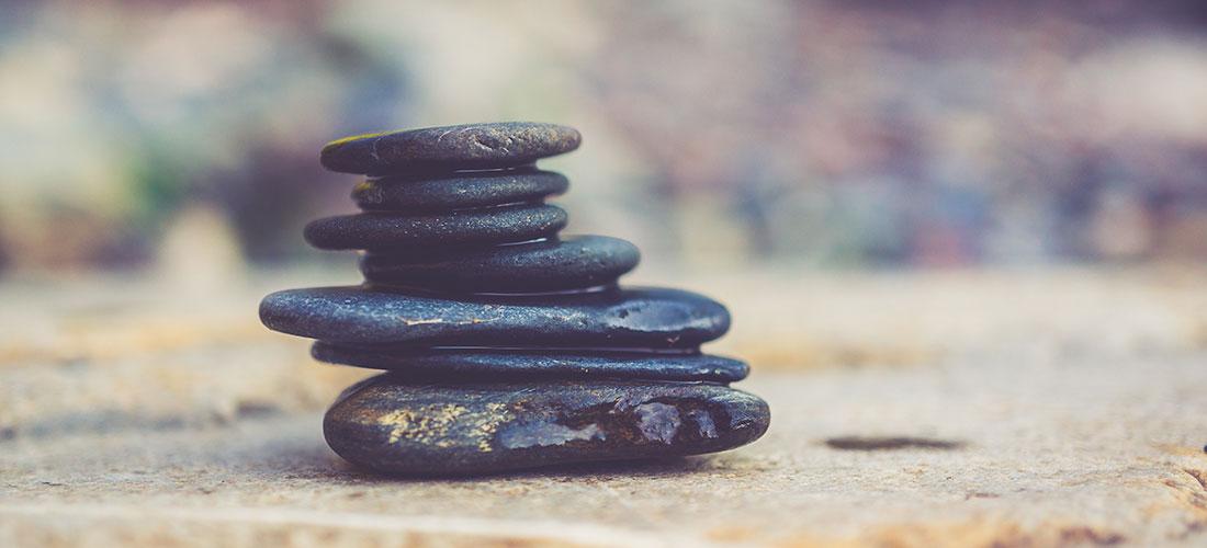 Accupuncture, Sego Elliott, Wellness Fingerprint